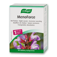 A.Vogel Menopause Hot Flashes - Night Sweats
