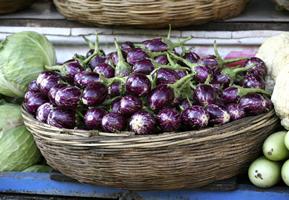 Comment cultiver l aubergine - Comment congeler des aubergines ...