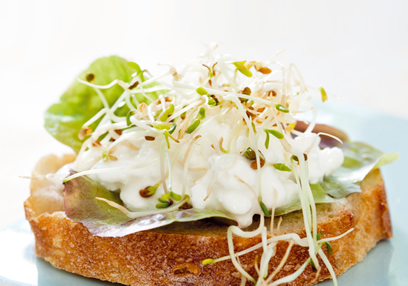 Miso Paste & Little Radish Sprout Sandwich