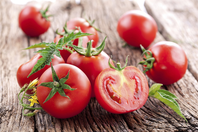 An Introduction to Tomatoes