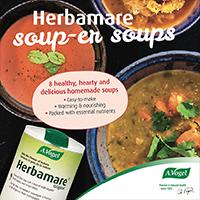 Herbamare Soups e-Book
