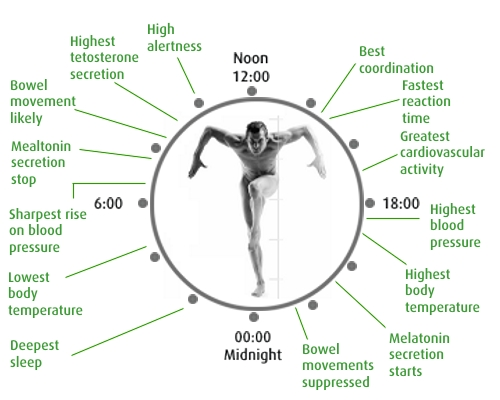 how to change body clock