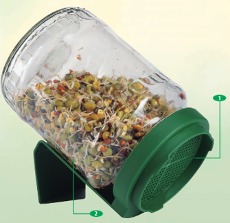 bioSnacky Glass Germinator