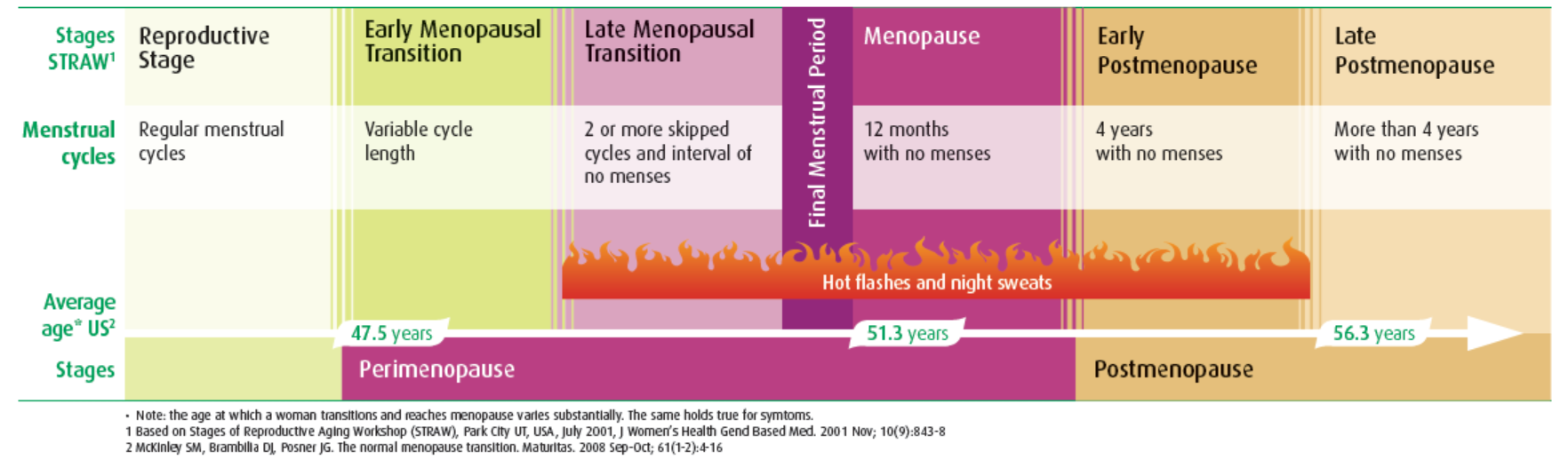 Average Menopause stages