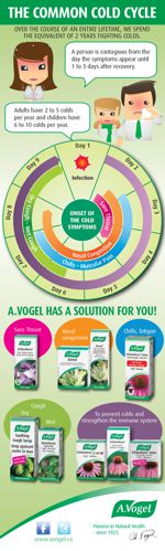 Cold and flu herbal remedies infographic