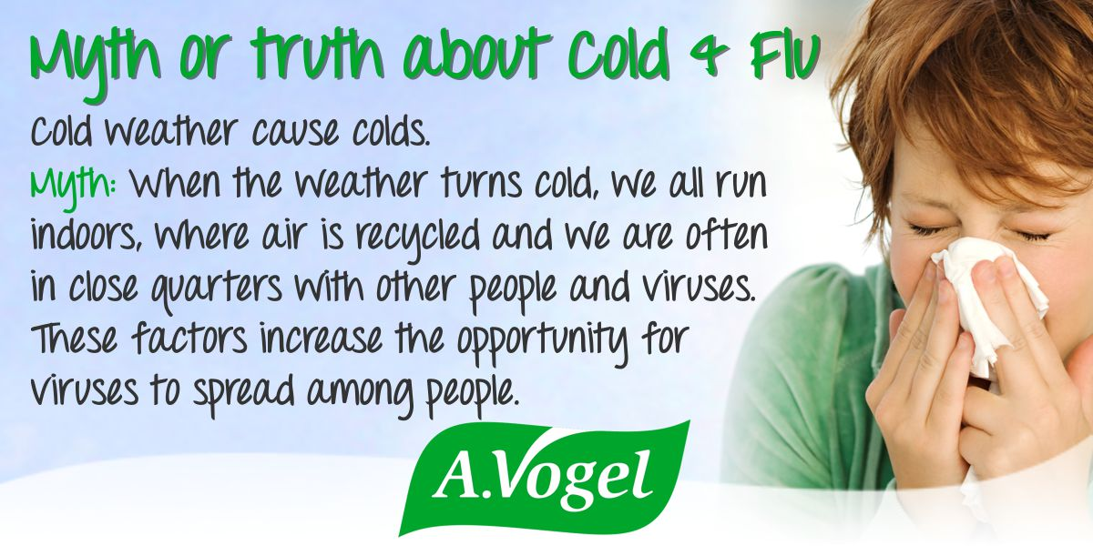 Myth or Truth about Cold and Flu